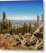 Mt. Howard, Wallowa Lake Metal Print