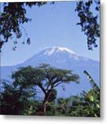 Mt. Kilimanjaro,moshi,tanzania Metal Print