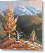 Mt. Rainier 5 Metal Print
