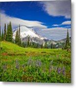 Mt Rainier And Wildflowers Metal Print