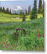Mt Rainier Meadow Flowers Metal Print