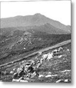 Mt Tam From The Tiburon Hills 1975 Metal Print