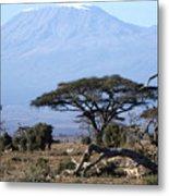 Mt.kilimanjaro Metal Print