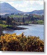 Muckish ,irish Landscape  Metal Print
