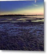 Muddy Beach Metal Print