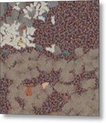 Muddy Footprints Over A Carpet Metal Print