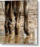 Muddy Reflections.. Metal Print