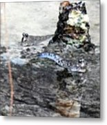 Mudskippers Metal Print
