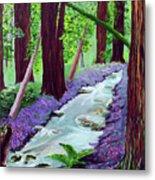 Muir Woods - Psalm 1 Verse 3 Metal Print