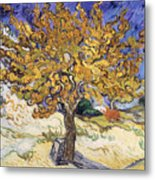 Mulberry Tree Metal Print