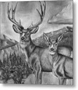 Mule Deer Heaven Metal Print