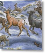 Mule Deer Surprise Metal Print