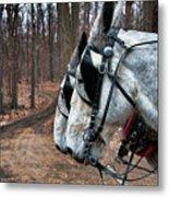 Mules At Sugar Camp Metal Print
