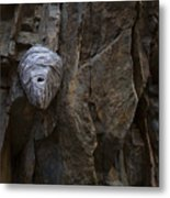 Mummy Head Metal Print by Barbara Schultheis