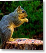 Munchin Metal Print