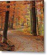 Munich Foliage Metal Print by Frenzypic By Chris Hoefer
