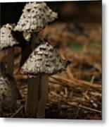 Mushroom Family Metal Print