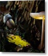Mushroom Lantern Enchanted Forest Metal Print