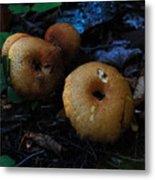 Mushroom Menagerie Metal Print