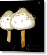 Mushrooms For Two Work Number 11 Metal Print