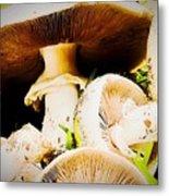 Mushrooms Metal Print