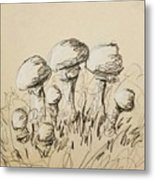 Mushrooms On Toned Paper With Charcoal Metal Print