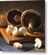 Mushrooms Metal Print by Robert Papp