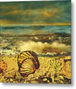 Mussels On The Beach Metal Print