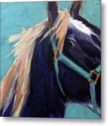 Mustang Sally Metal Print