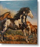 Mustangs On The Run Metal Print