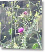 Mustard And Thistle Metal Print