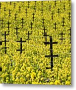 Mustard Color In The Vineyard  Napa Ca. Metal Print