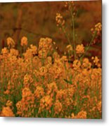 Mustard Garden Metal Print
