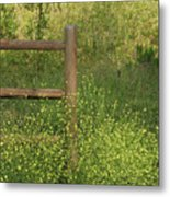 Mustard Grass And Fence At Entrance To Peters Canyon Metal Print