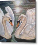 Mute Swans - River Severn Metal Print