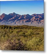 My Catalina Mountains Metal Print
