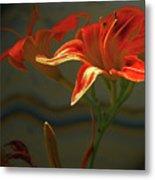 My Daylilies 2 Metal Print
