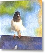 My Feathers Metal Print