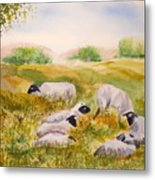 My Flock Of Sheep Metal Print