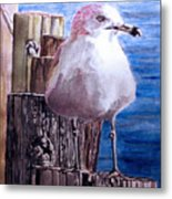 My Gull Metal Print