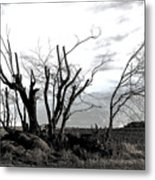 My Home Town-after The Storm Metal Print