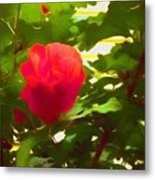 My Love Is Like  A Red Red Rose Of Sharon Metal Print