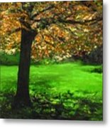 My Love Of Trees I Metal Print