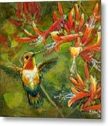 My Loving Hummingbird Metal Print