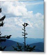 My Mountain Bird Metal Print