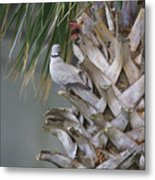 My Own Palm Tree Metal Print