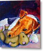 My Teddy - Wire Hair Fox Terrier Metal Print by Lyn Cook