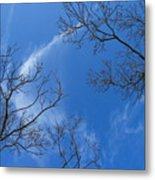 My Trees No.13 Metal Print