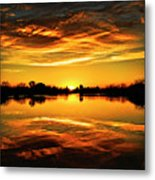 My View  Metal Print
