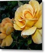 My Yellow Rose Metal Print
